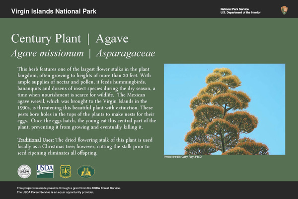 Example interpretive sign