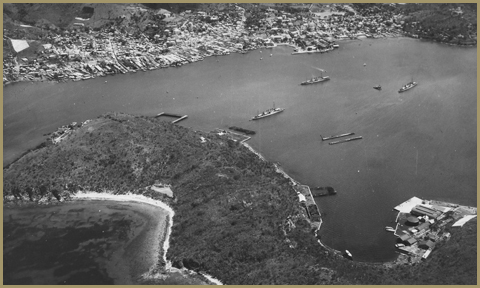 Aerial view of the activity in the harbor and Hassel Island's east coast